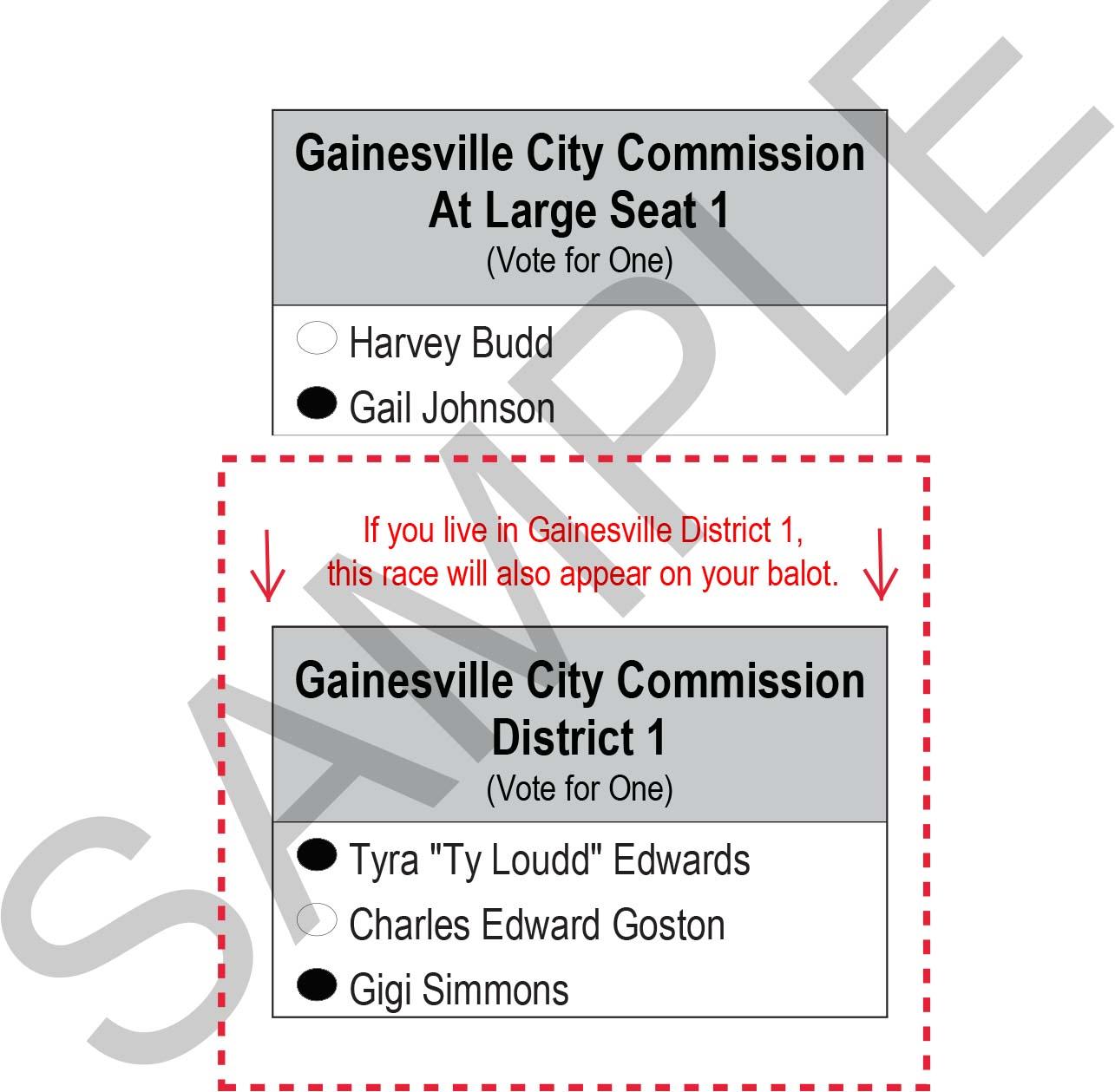 2018 Gainesville Sample Ballot